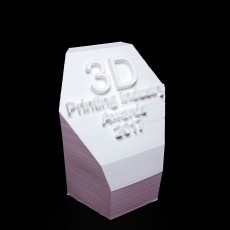 3DPI Trophy