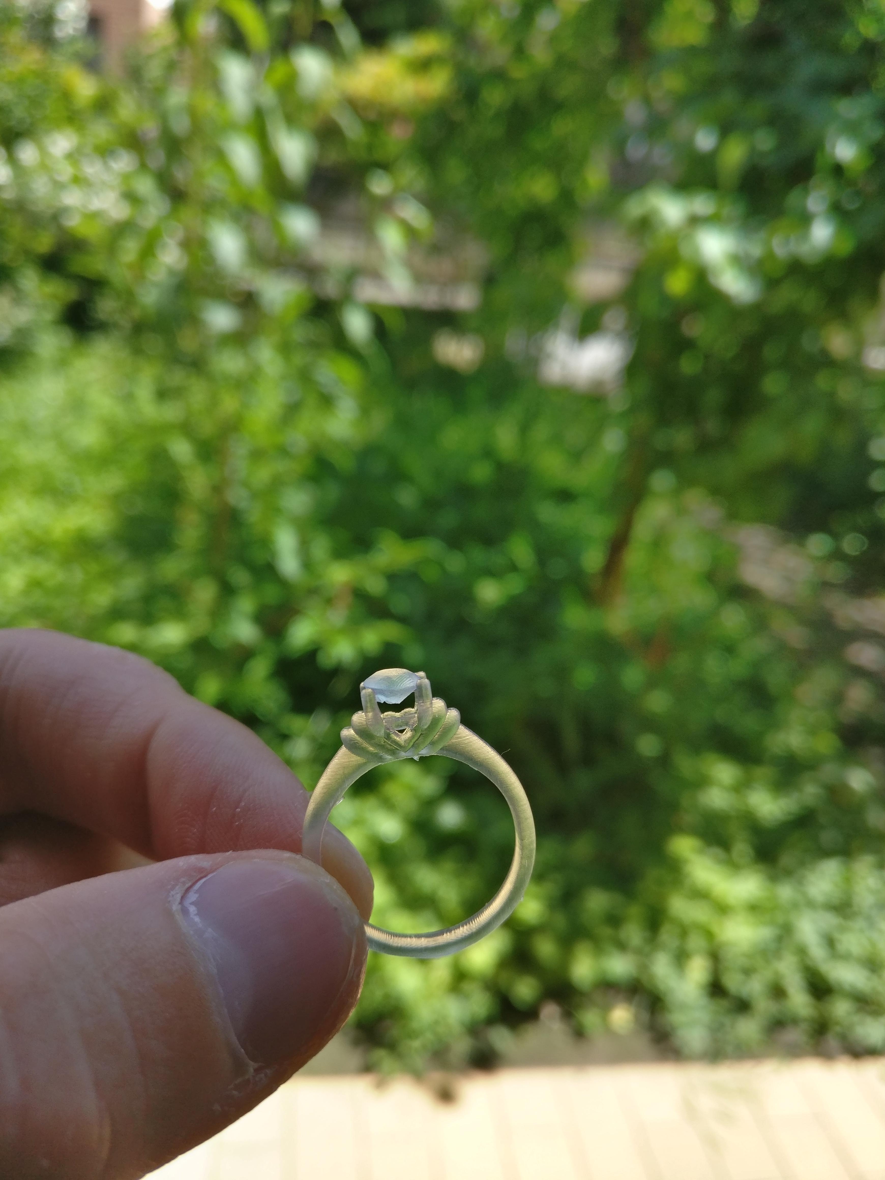 Ring 01 image