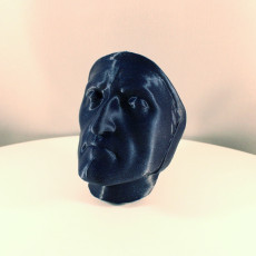 Picture of print of Death Mask of Dante Alighieri
