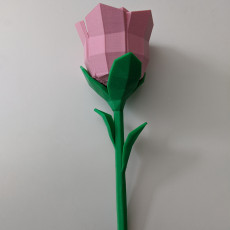 Picture of print of Low poly Rose