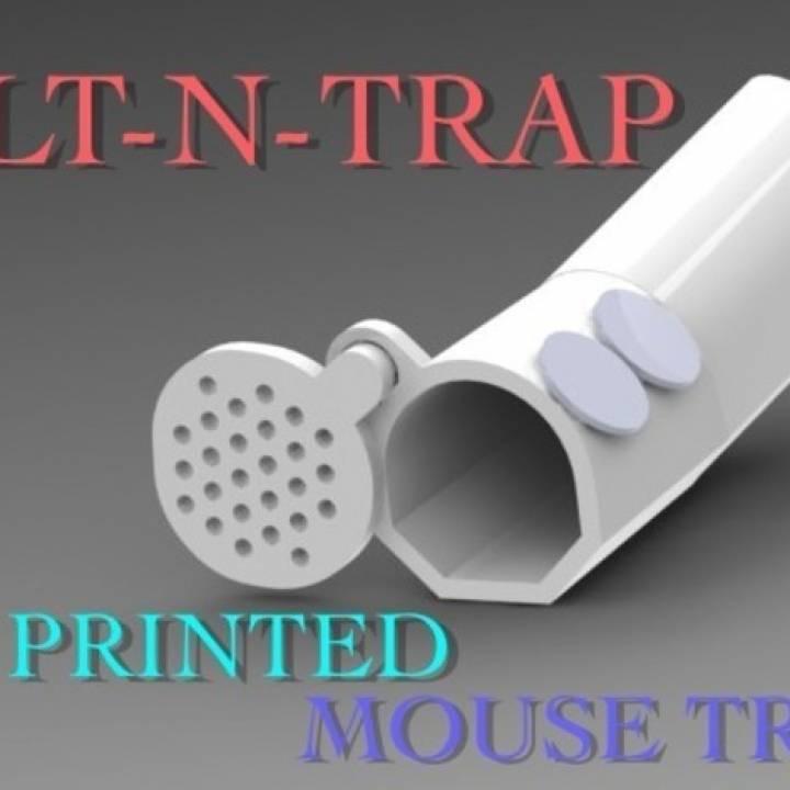 TILT-N-TRAP (MOUSE TRAP)