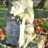 Memorial Peli Tamas (Lion in the tomb) image