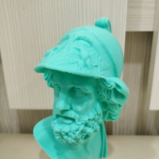 Picture of print of Bust of Menelaus