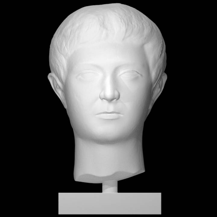 Head of a flat-faced young man