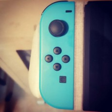 Picture of print of Nintendo Switch attachable grip