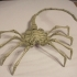 Agisis Ultimate Alien Face Hugger (40in x 23in - LIFE SIZE!) image