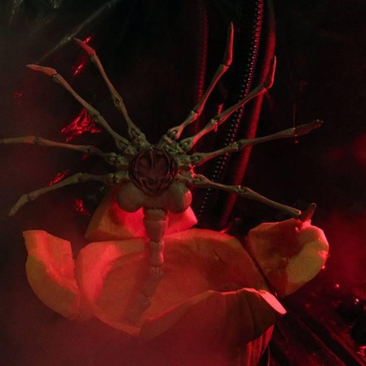 Agisis Ultimate Alien Face Hugger (40in x 23in - LIFE SIZE!)
