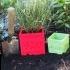 CRASH BANDICOOT PLANT POT CRATES image