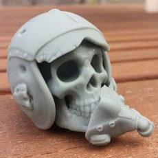 "Picture of print of ""Maverick"" Pilot Skull"