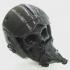 """""""Maverick"""" Pilot Skull print image"""