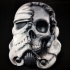 Star Wars Death Trooper print image