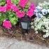 Sidewalk Lantern image