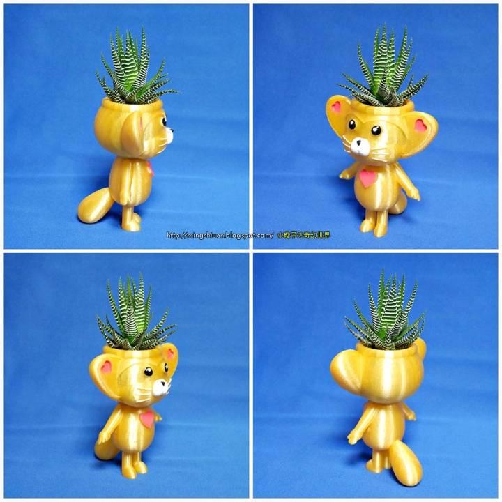 Cute animal - lemur king potted