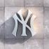 New York Yankee Logo image