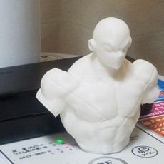 Picture of print of Dragon Ball super - Jiren bust