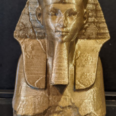 Picture of print of Head and Shoulders of a Sphinx of Hatshepsut