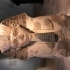 Head and Shoulders of a Sphinx of Hatshepsut image
