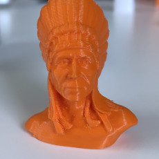 Picture of print of Native American Bust