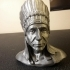 Native American Bust image