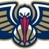 pellicans logo image