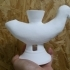 Duck Shaped Vessel image
