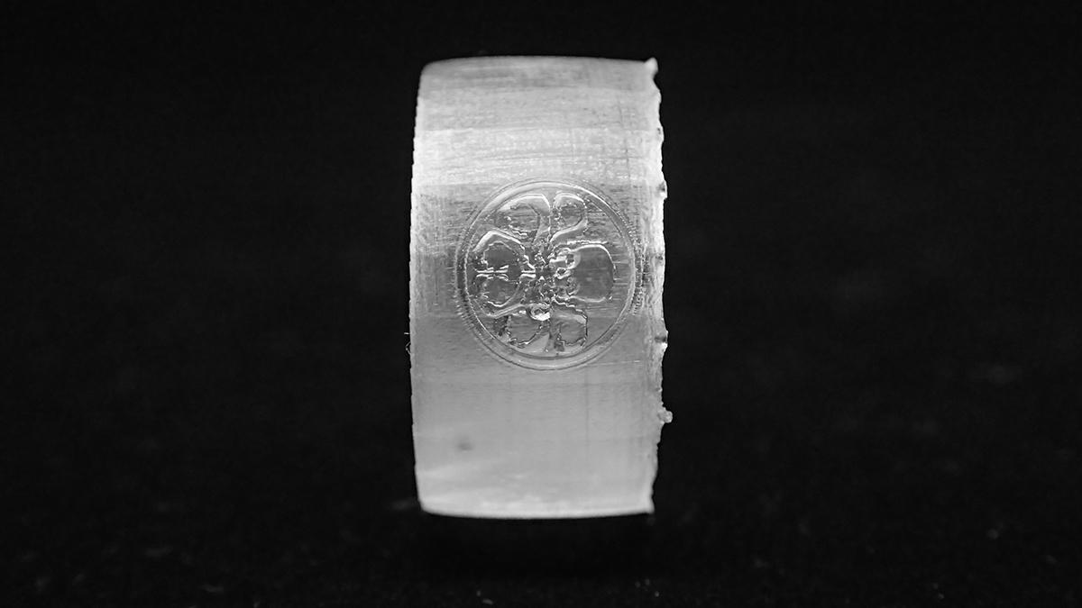 Hydra ring image