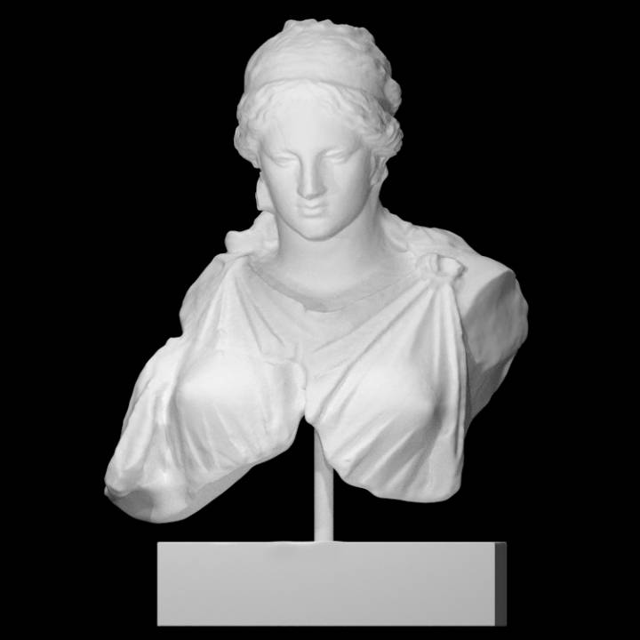 Bust of a Woman (Artemis?)