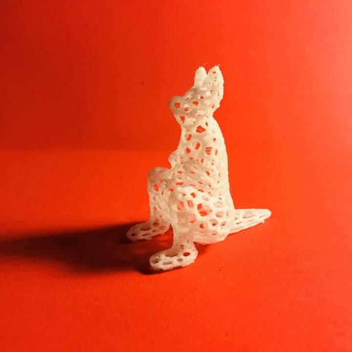 Kangaroo - Voronoi Style