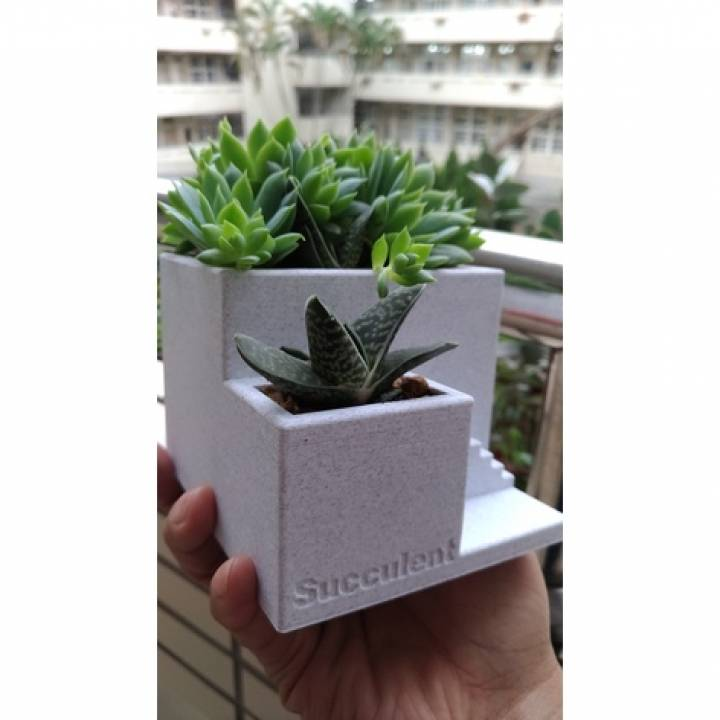 cement like succulent pot by orangeteacher