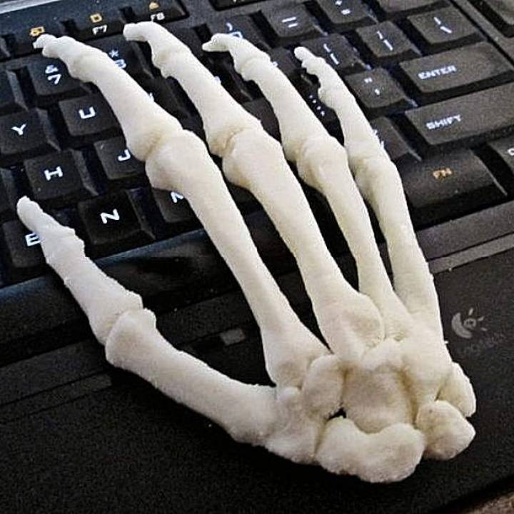photo relating to Printable Human Skeleton to Assemble referred to as 3D Printable Human Hand, Instantly Total-Scale embled by way of Person