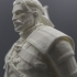 Geralt of Rivia / Witcher 3 / 3d stl model image