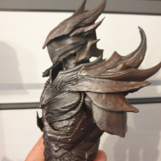 Picture of print of Elder Scrolls Skyrim Daedric Armor Bust This print has been uploaded by Daniel