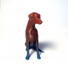 Picture of print of sitting natural doberman