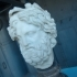 Head of Silvanus Crowned with Pine image