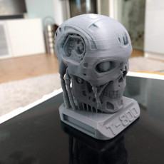 Picture of print of T800 Tricolor Abs Terminator