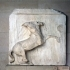 Parthenon South Metope V image
