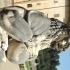 Lion Statue image