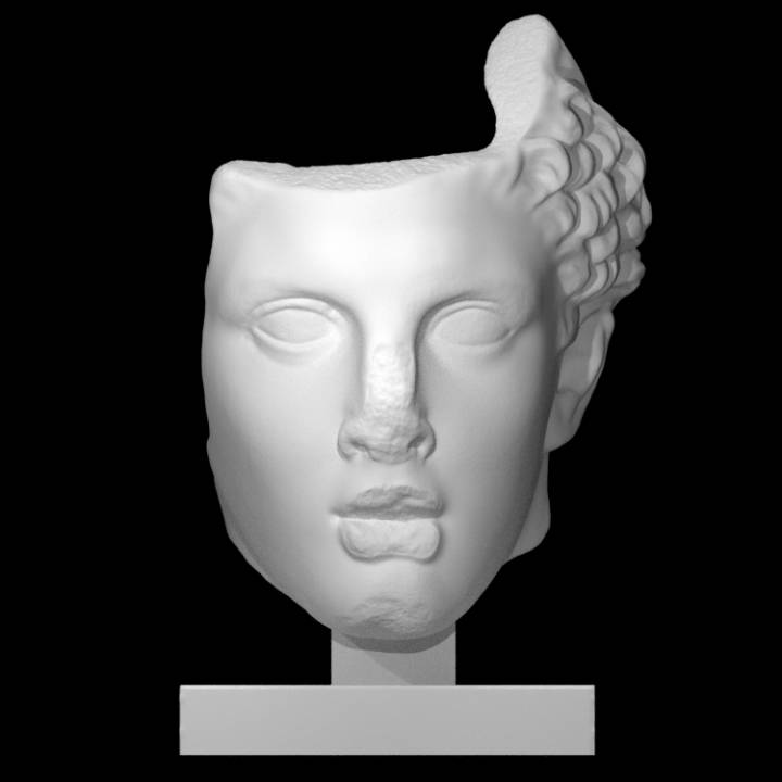 Colossal Head of Hercules