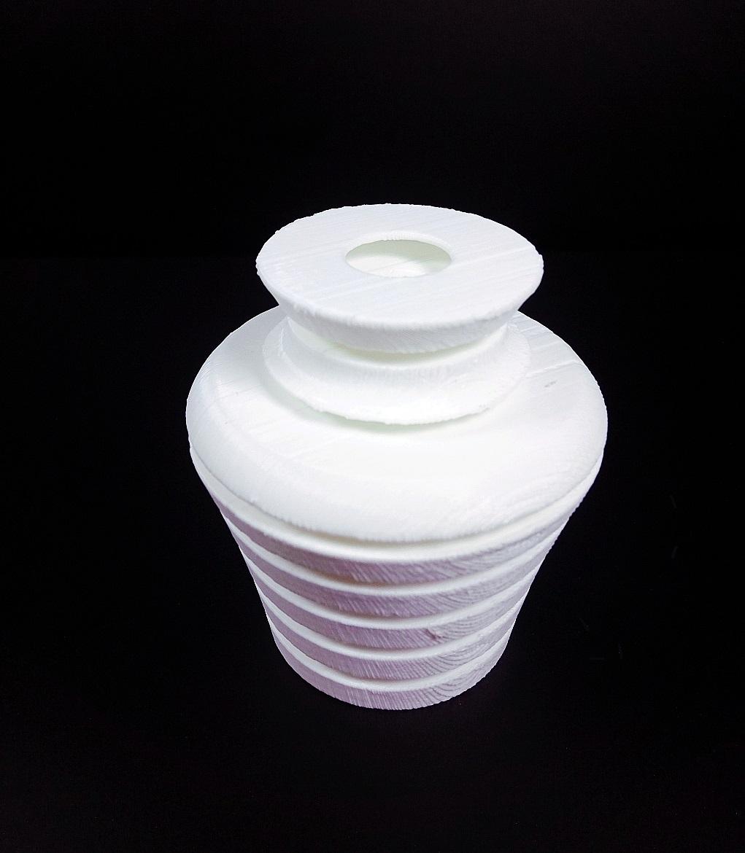 Vase in a Vase image