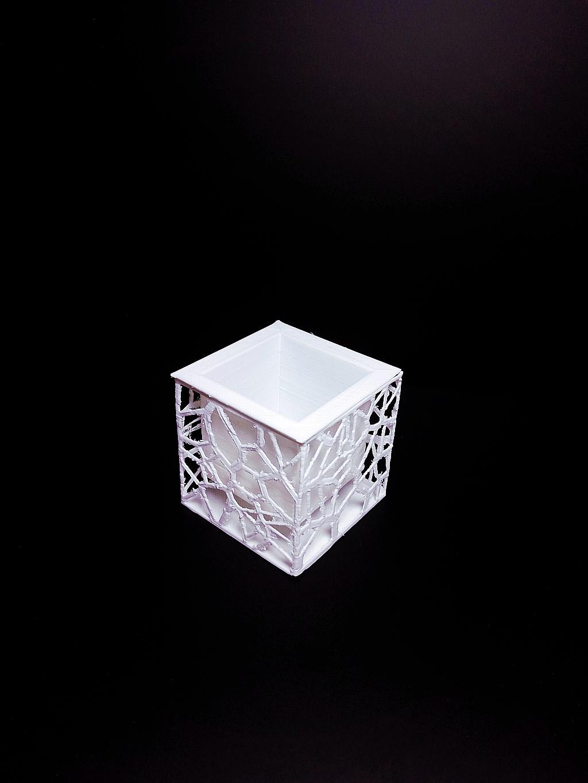 Voronoi Planter image