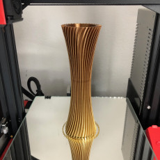 Picture of print of Spiral Vase