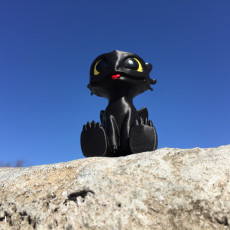 Picture of print of Toothless