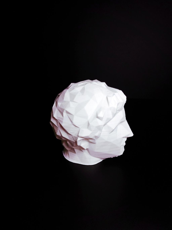 cambridge-head-of-demetrios-polio filtered image