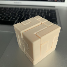 Picture of print of 4x4 Puzzle Cube