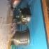 Fallout 4 Plasma Grenade Prop print image