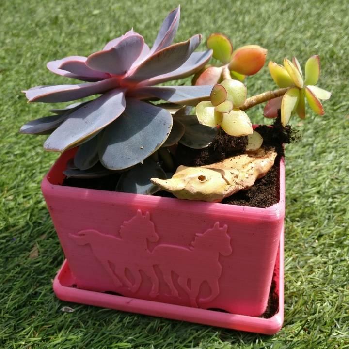 Plant tray horse @BQ_3d