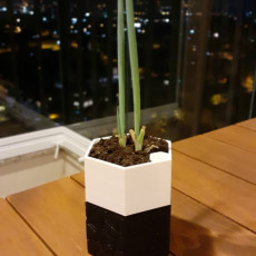 Picture of print of Self-watering Planter 3