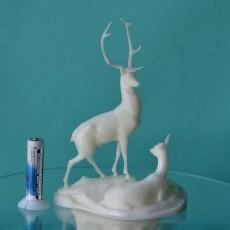 Picture of print of Deers