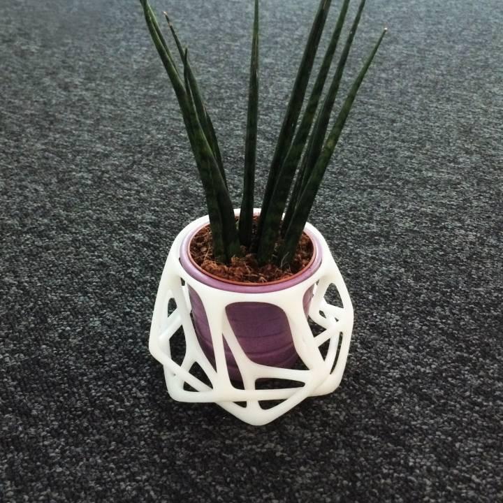 Parametric Flowerpot
