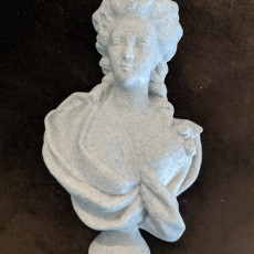 Picture of print of Bust of a Woman